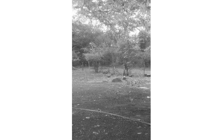 Foto de rancho en venta en  , hueyapan de ocampo, hueyapan de ocampo, veracruz de ignacio de la llave, 1288279 No. 04
