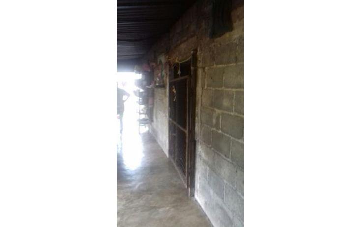 Foto de rancho en venta en  , hueyapan de ocampo, hueyapan de ocampo, veracruz de ignacio de la llave, 1288279 No. 10