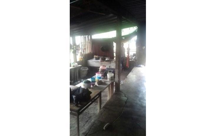 Foto de rancho en venta en  , hueyapan de ocampo, hueyapan de ocampo, veracruz de ignacio de la llave, 1288279 No. 12