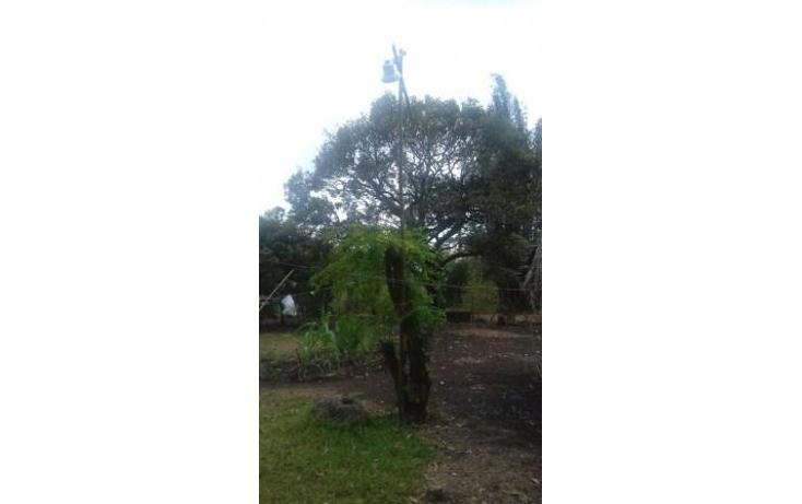 Foto de rancho en venta en  , hueyapan de ocampo, hueyapan de ocampo, veracruz de ignacio de la llave, 1288279 No. 16