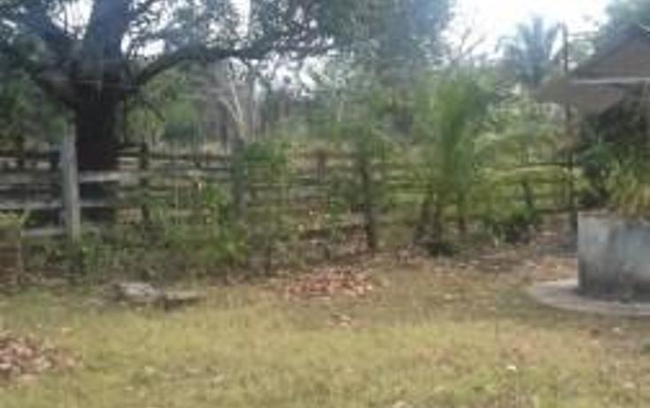 Foto de rancho en venta en  , hueyapan de ocampo, hueyapan de ocampo, veracruz de ignacio de la llave, 1288279 No. 17