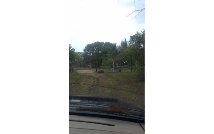 Foto de rancho en venta en  , hueyapan de ocampo, hueyapan de ocampo, veracruz de ignacio de la llave, 1288279 No. 18
