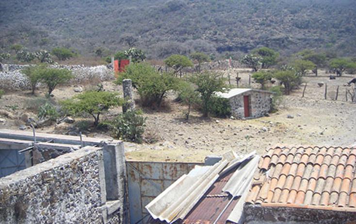 Foto de rancho en venta en  , huichapan centro, huichapan, hidalgo, 1971846 No. 02
