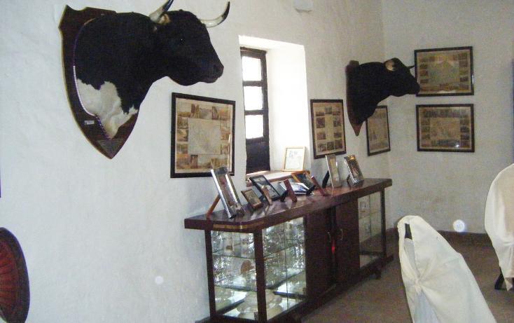 Foto de rancho en venta en  , huichapan centro, huichapan, hidalgo, 1971846 No. 06
