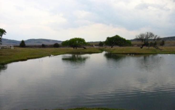 Foto de rancho en venta en  , huichapan, huichapan, hidalgo, 1136161 No. 09