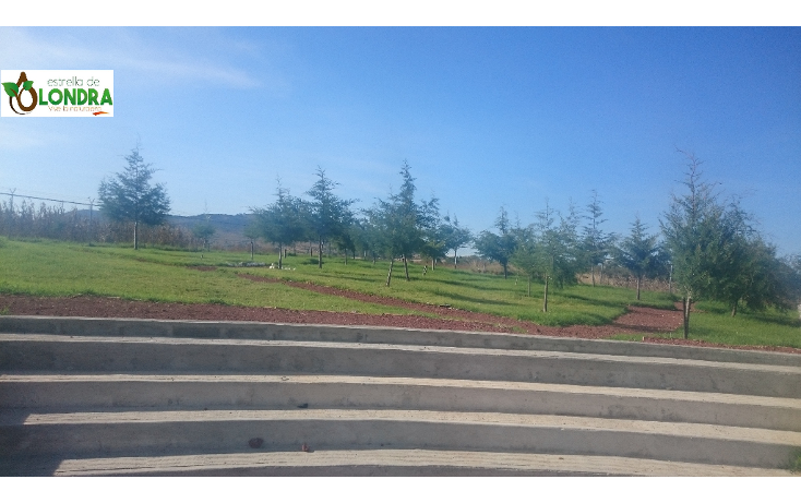 Foto de terreno habitacional en venta en  , huimilpan centro, huimilpan, querétaro, 1725020 No. 04