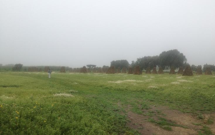 Foto de terreno industrial en venta en  , huitzila, tizayuca, hidalgo, 1143261 No. 02