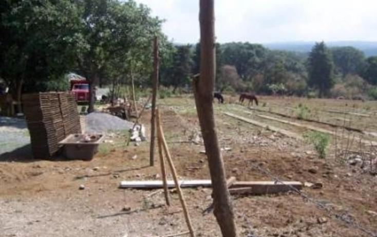 Foto de terreno habitacional en venta en  , huitzilac, huitzilac, morelos, 1210305 No. 07