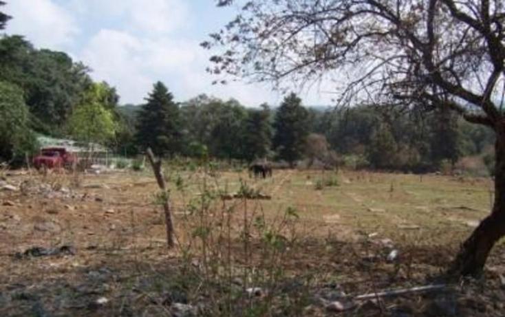 Foto de terreno habitacional en venta en  , huitzilac, huitzilac, morelos, 1210305 No. 08