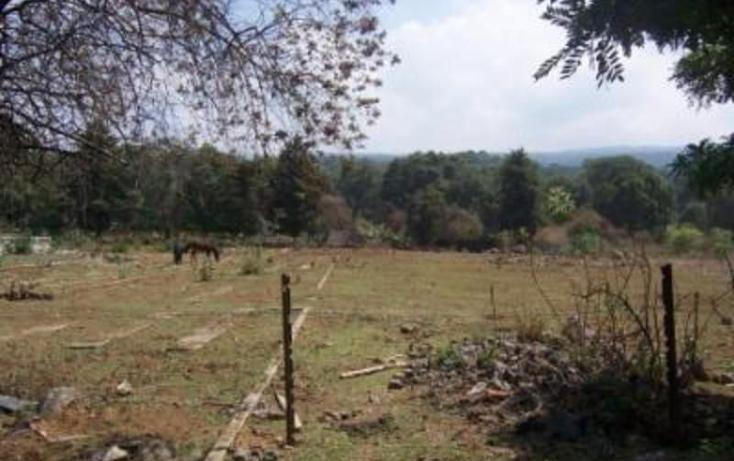 Foto de terreno habitacional en venta en  , huitzilac, huitzilac, morelos, 1210305 No. 10