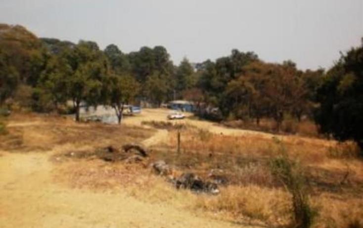 Foto de terreno habitacional en venta en  , huitzilac, huitzilac, morelos, 1210391 No. 04
