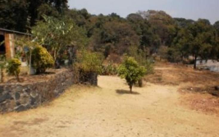 Foto de terreno habitacional en venta en  , huitzilac, huitzilac, morelos, 1210391 No. 10