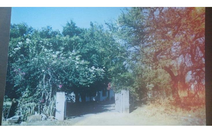 Foto de terreno habitacional en venta en  , huitzililla, ayala, morelos, 1684637 No. 06