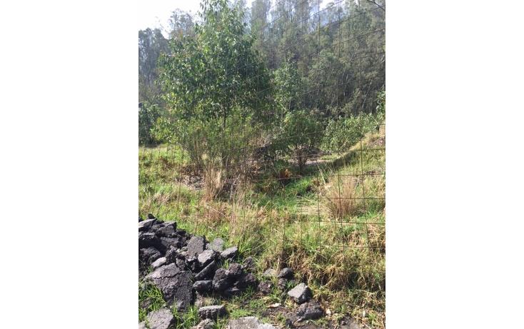Foto de terreno habitacional en venta en  , huixquilucan de degollado centro, huixquilucan, m?xico, 1381065 No. 03