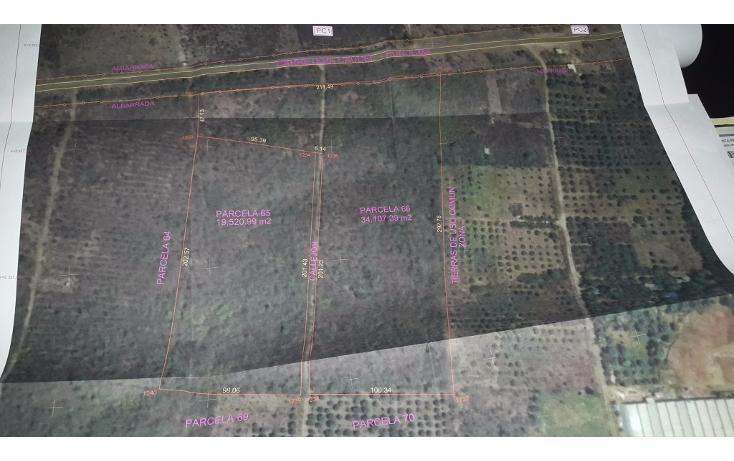 Foto de terreno habitacional en venta en  , huncanab, hunucmá, yucatán, 1736670 No. 02