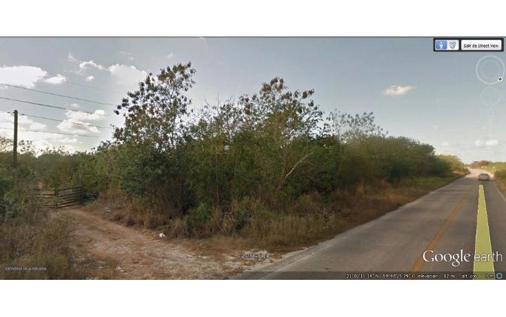 Foto de terreno habitacional en venta en  , huncanab, hunucmá, yucatán, 1736670 No. 05