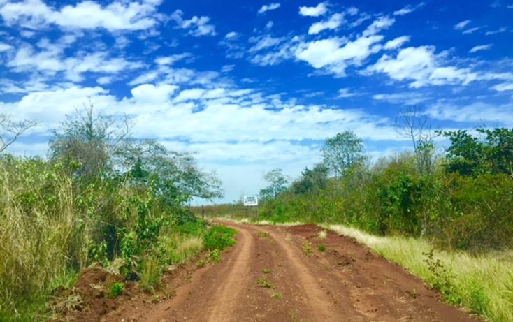 Foto de rancho en venta en  , ich-ek, hopelchén, campeche, 1259571 No. 09
