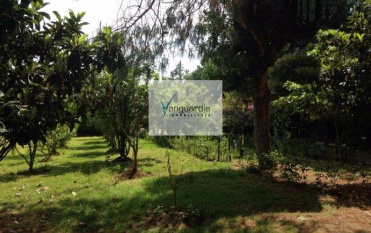Foto de rancho en venta en ichupio, tzintzuntzan, tzintzuntzan, michoacán de ocampo, 1000147 no 10