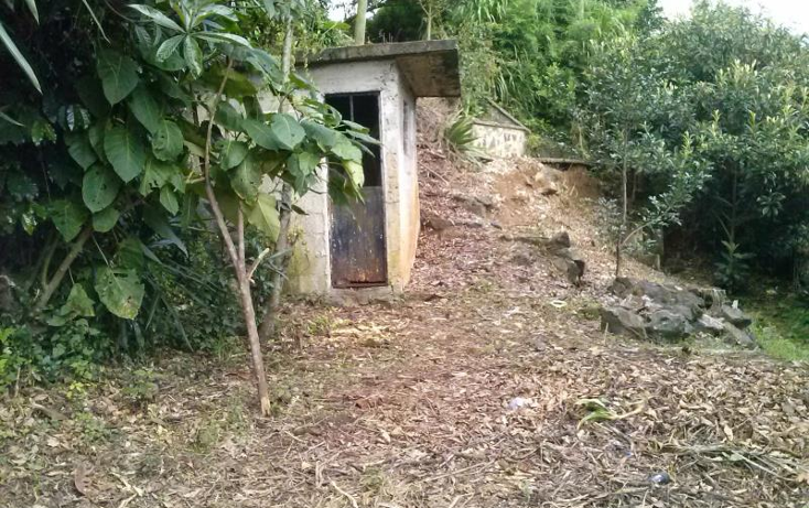 Foto de terreno habitacional en venta en  2016, los sauces, xalapa, veracruz de ignacio de la llave, 1528670 No. 03