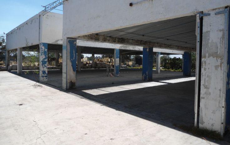 Foto de terreno habitacional en renta en ignacio allende lote 148 y 149, pueblo nuevo de morelos, zumpango, estado de méxico, 1708068 no 04