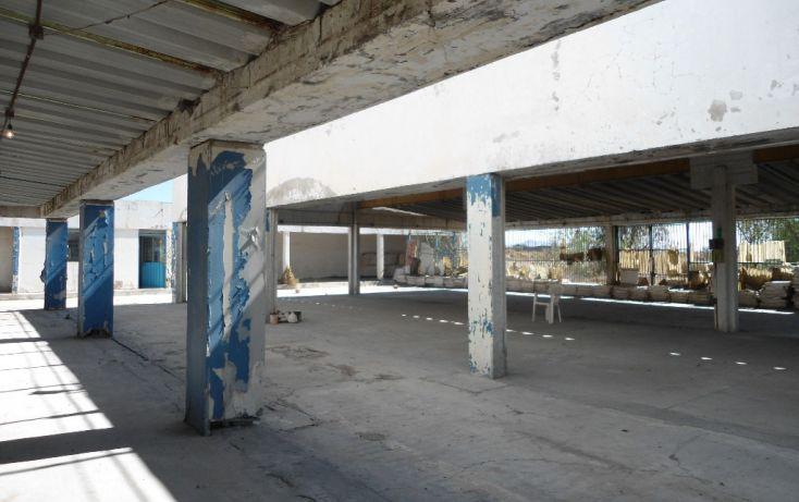 Foto de terreno habitacional en renta en ignacio allende lote 148 y 149, pueblo nuevo de morelos, zumpango, estado de méxico, 1708068 no 09