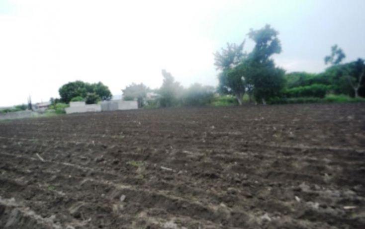 Foto de terreno habitacional en venta en, ignacio zaragoza, cuautla, morelos, 1151499 no 02