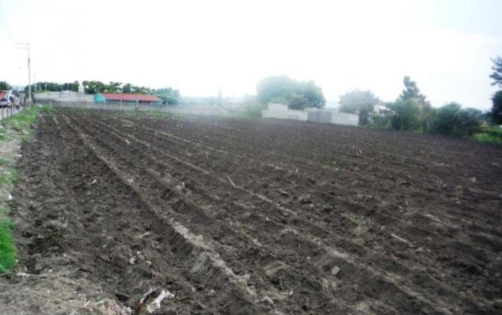 Foto de terreno habitacional en venta en, ignacio zaragoza, cuautla, morelos, 1151499 no 04
