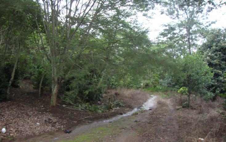 Foto de terreno habitacional en venta en, indeco animas, xalapa, veracruz, 1070625 no 02