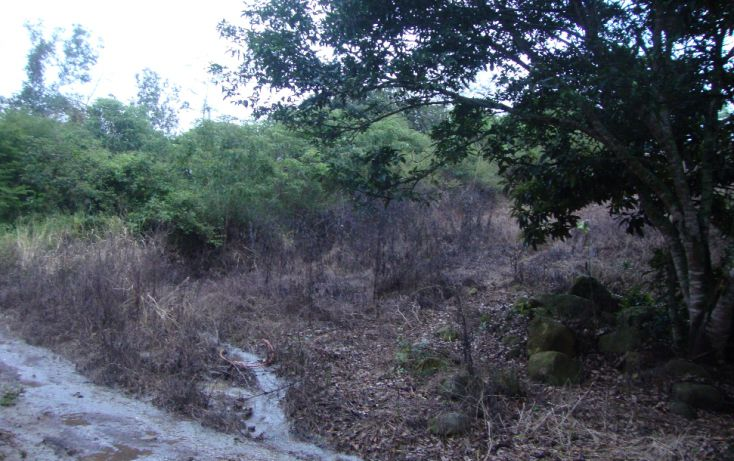 Foto de terreno habitacional en venta en, indeco animas, xalapa, veracruz, 1070625 no 04