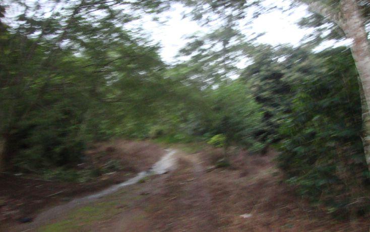 Foto de terreno habitacional en venta en, indeco animas, xalapa, veracruz, 1070625 no 06