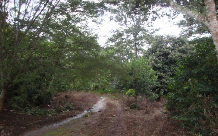 Foto de terreno habitacional en venta en, indeco animas, xalapa, veracruz, 1070625 no 07