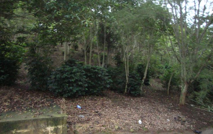 Foto de terreno habitacional en venta en  , indeco animas, xalapa, veracruz de ignacio de la llave, 1070625 No. 01