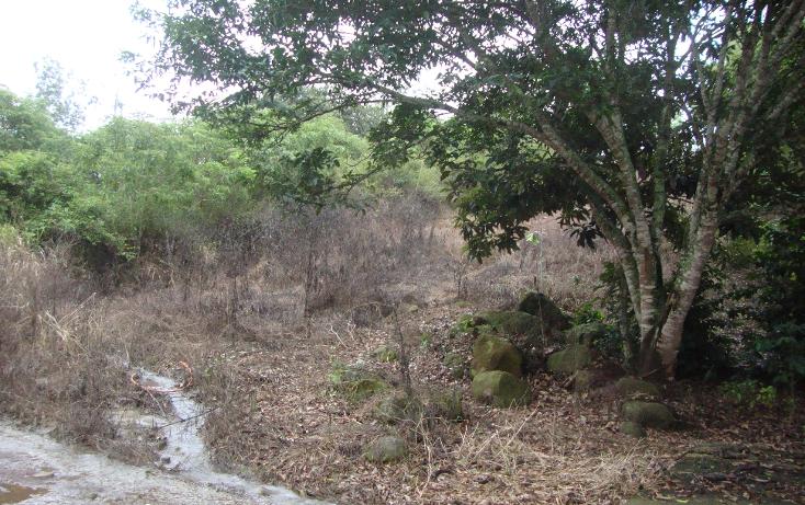 Foto de terreno habitacional en venta en  , indeco animas, xalapa, veracruz de ignacio de la llave, 1070625 No. 03