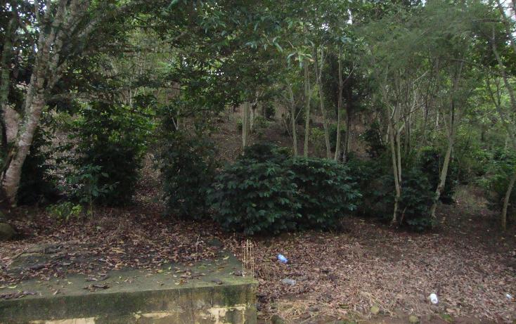 Foto de terreno habitacional en venta en  , indeco animas, xalapa, veracruz de ignacio de la llave, 1070625 No. 05