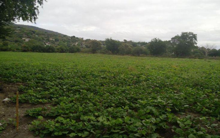 Foto de terreno industrial en venta en independencia carretera tepetzingo tetecalita, tetecalita, emiliano zapata, morelos, 1450399 no 01