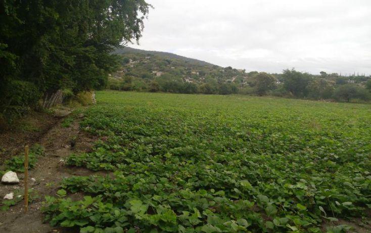 Foto de terreno industrial en venta en independencia carretera tepetzingo tetecalita, tetecalita, emiliano zapata, morelos, 1450399 no 03