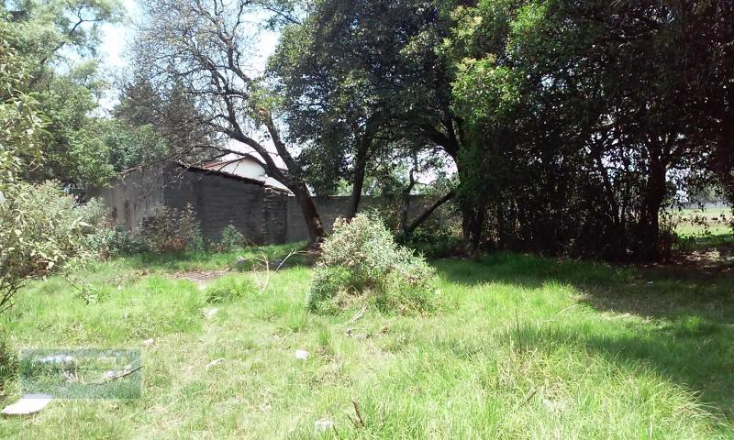 Foto de terreno habitacional en venta en  , guadalupe, san mateo atenco, méxico, 1910943 No. 02