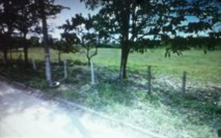 Foto de terreno habitacional en venta en  , independencia, puerto vallarta, jalisco, 1527311 No. 01