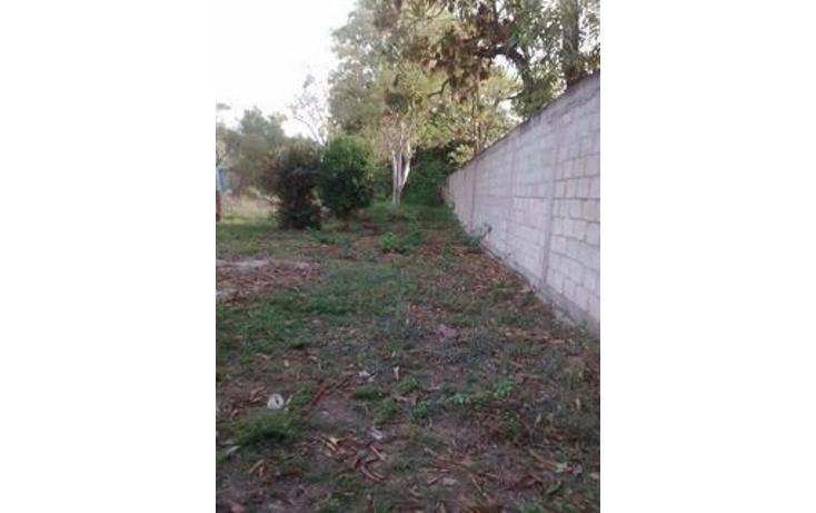 Foto de terreno habitacional en venta en  , independencia, puerto vallarta, jalisco, 1892550 No. 05