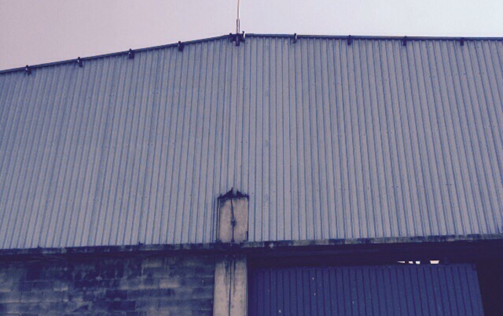 Foto de nave industrial en venta en  , industrial chalco, chalco, méxico, 1258603 No. 13