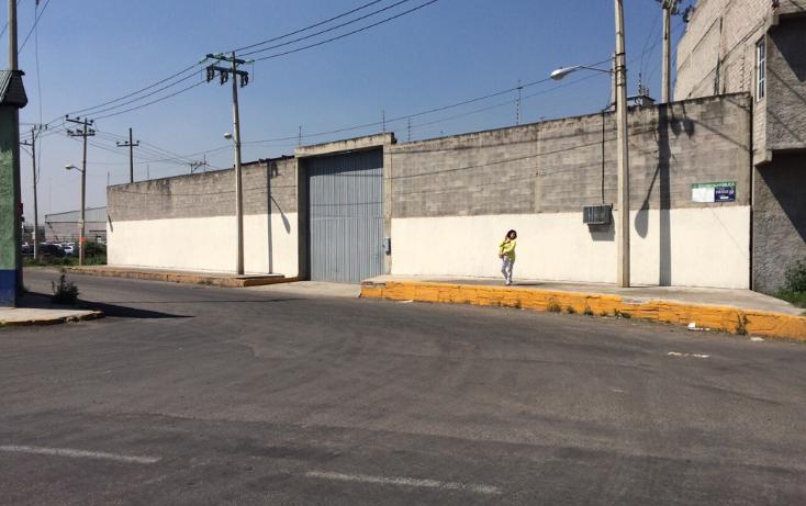 Foto de nave industrial en renta en  , industrial chalco, chalco, méxico, 1544753 No. 06