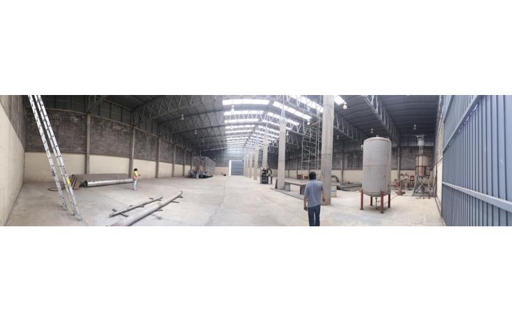 Foto de nave industrial en renta en  , industrial chalco, chalco, méxico, 1544753 No. 12