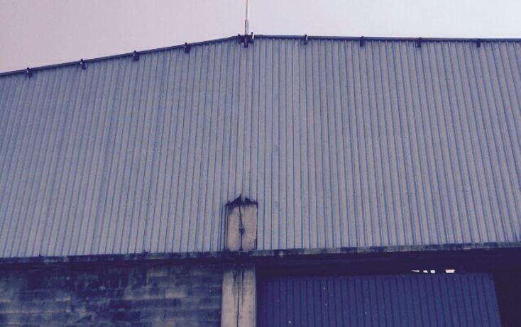Foto de nave industrial en renta en  , industrial chalco, chalco, méxico, 1544753 No. 13