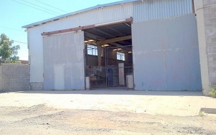 Foto de nave industrial en renta en  , industrial el palmito, culiacán, sinaloa, 1076573 No. 02