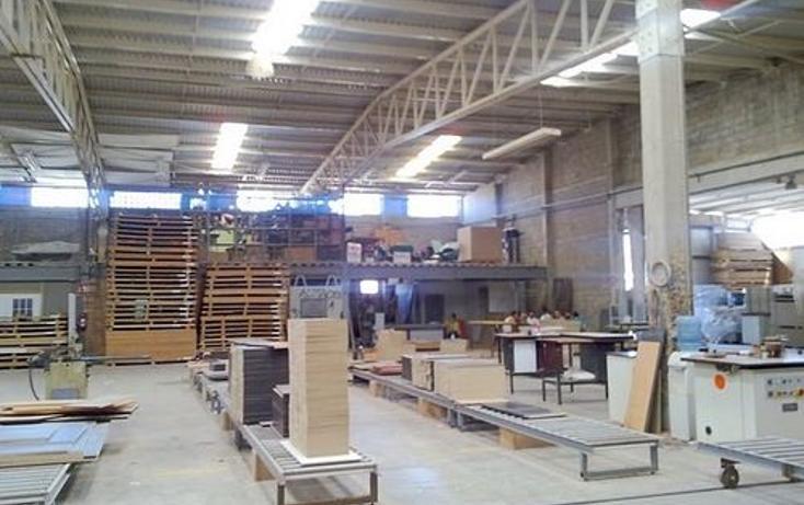 Foto de nave industrial en renta en  , industrial el palmito, culiacán, sinaloa, 1076573 No. 03