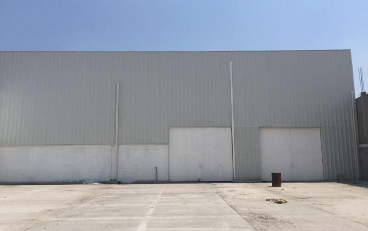 Foto de nave industrial en renta en  , industrial juárez, león, guanajuato, 1619422 No. 01