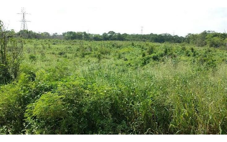 Foto de terreno comercial en renta en  , industrial, mérida, yucatán, 1040497 No. 07