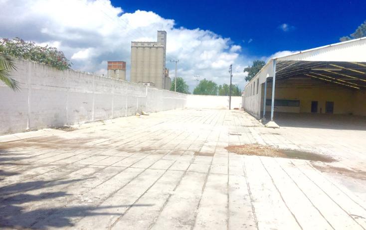 Foto de nave industrial en renta en  , industrial, tlaxcoapan, hidalgo, 2017150 No. 01