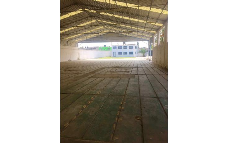 Foto de nave industrial en renta en  , industrial, tlaxcoapan, hidalgo, 2017150 No. 04
