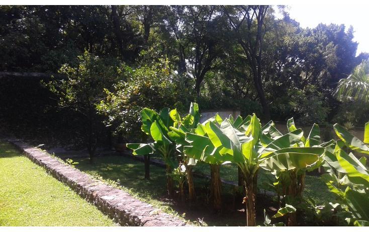 Foto de casa en venta en  , internado palmira, cuernavaca, morelos, 1746873 No. 36